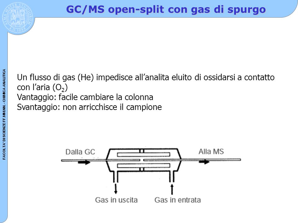 GC/MS open-split con gas di spurgo