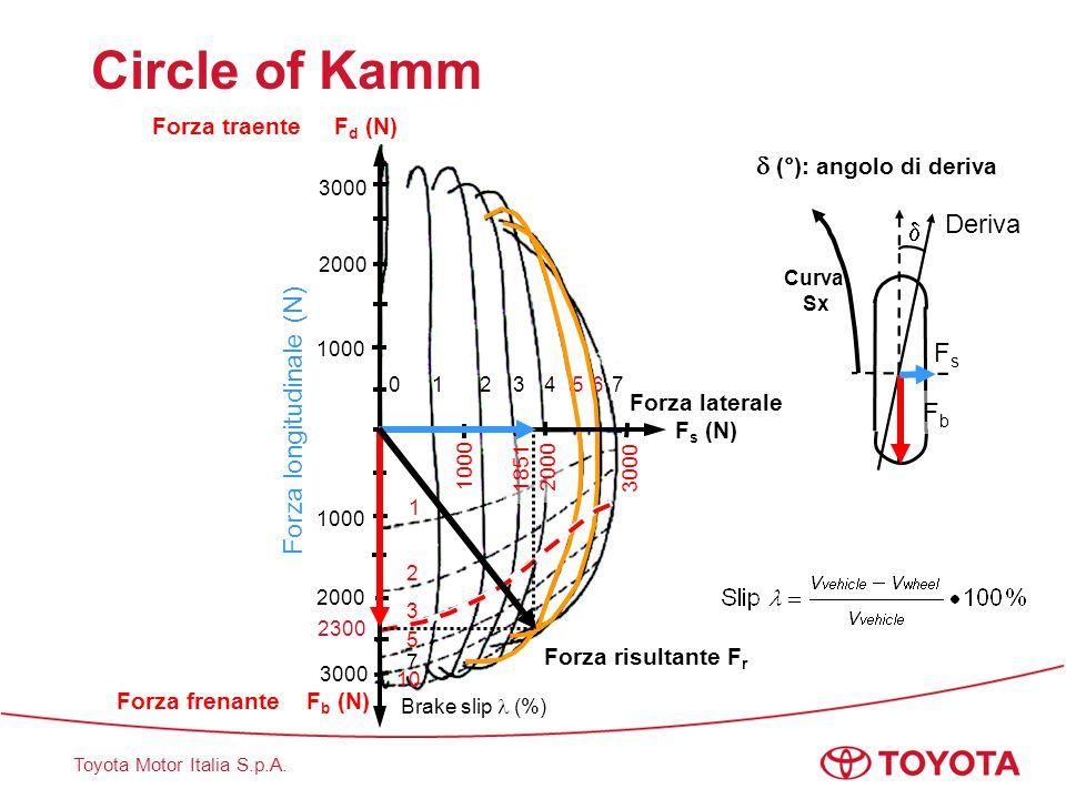 Circle of Kamm  (°): angolo di deriva Deriva  Fs