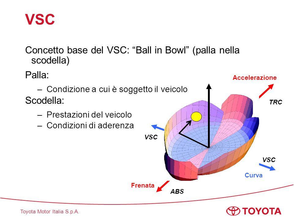 VSC Concetto base del VSC: Ball in Bowl (palla nella scodella)