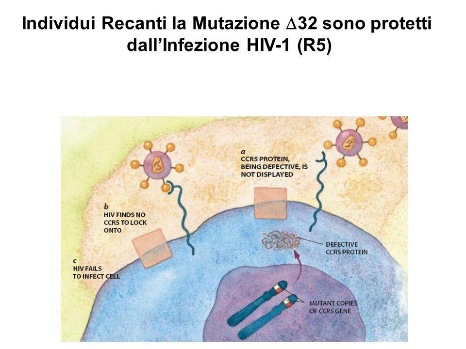 Individui Recanti la Mutazione D32 sono protetti
