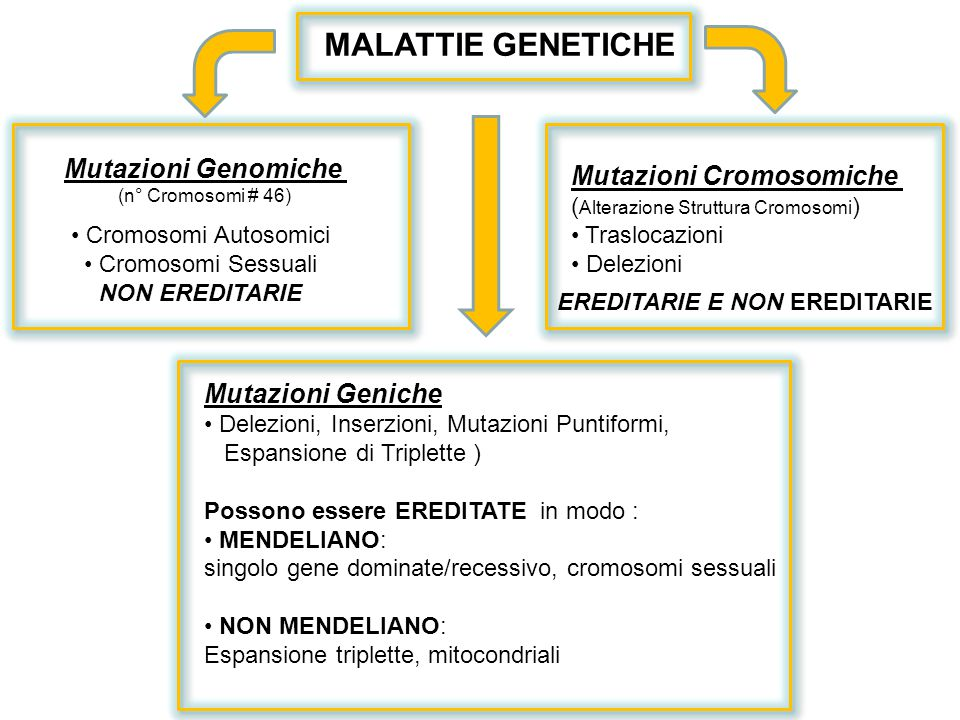MALATTIE GENETICHE Mutazioni Genomiche Mutazioni Cromosomiche