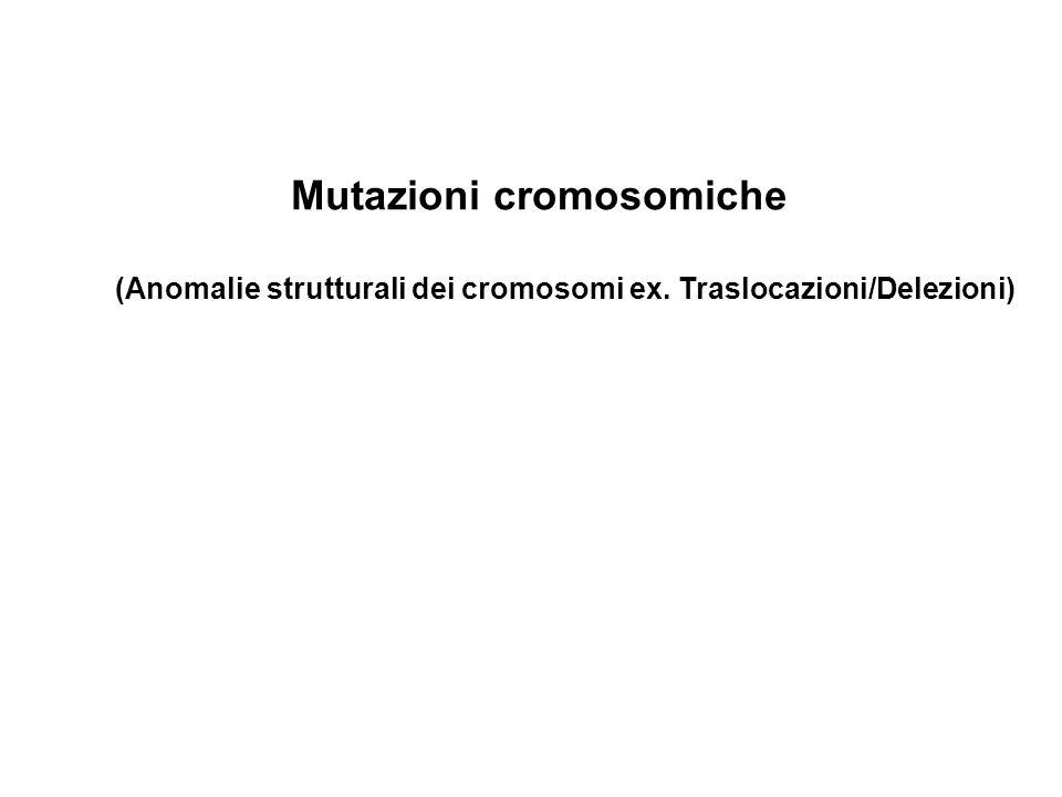 Mutazioni cromosomiche