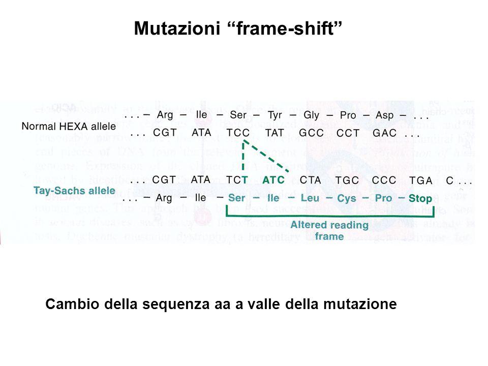 Mutazioni frame-shift
