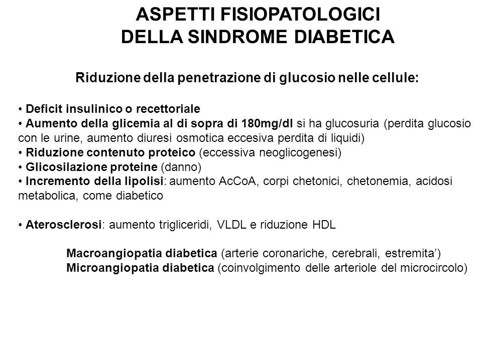 ASPETTI FISIOPATOLOGICI DELLA SINDROME DIABETICA