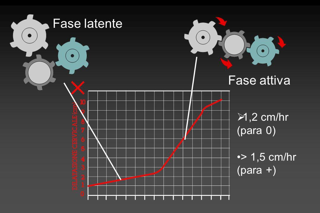 Fase latente Fase attiva 1,2 cm/hr (para 0) > 1,5 cm/hr (para +)