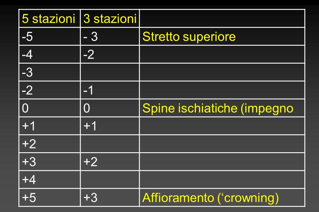 5 stazioni 3 stazioni. -5. - 3. Stretto superiore. -4. -2. -3. -1. Spine ischiatiche (impegno.