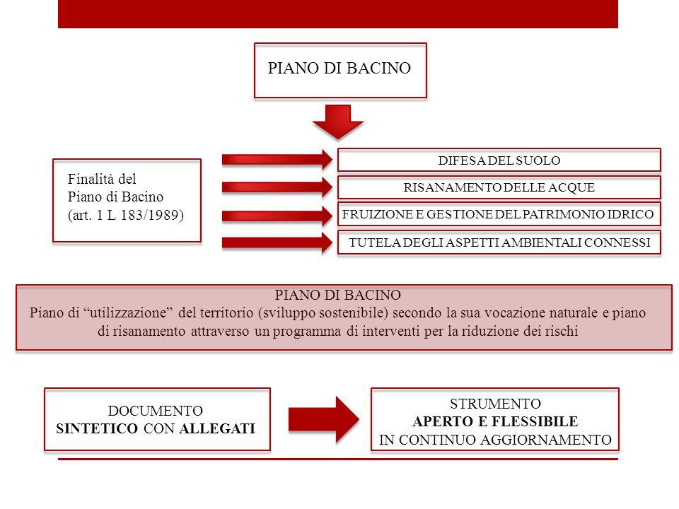 PIANO DI BACINO Finalità del Piano di Bacino (art. 1 L 183/1989)