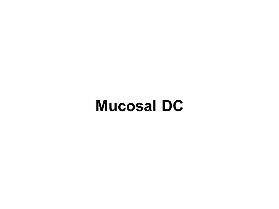 Mucosal DC