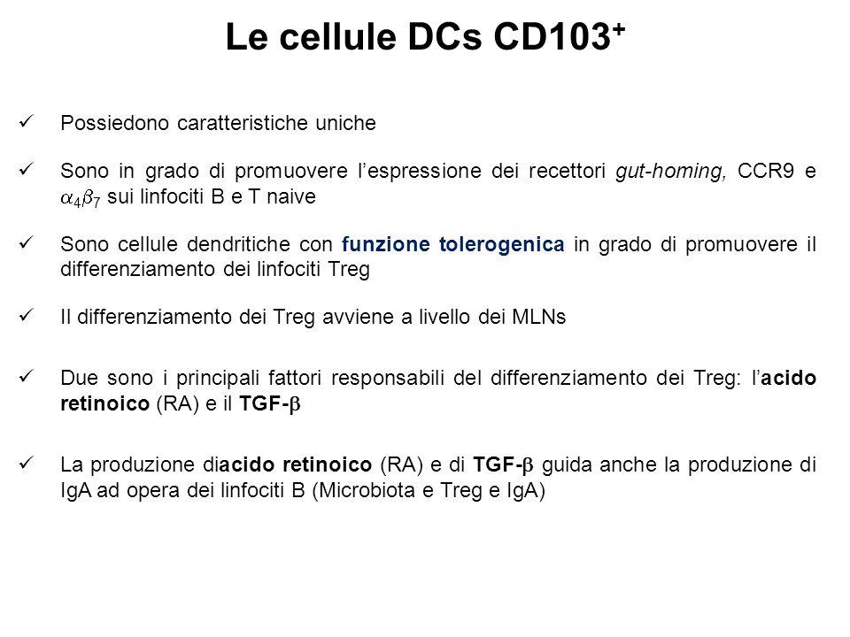 Le cellule DCs CD103+ Possiedono caratteristiche uniche