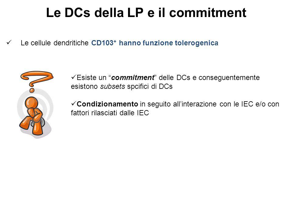 Le DCs della LP e il commitment