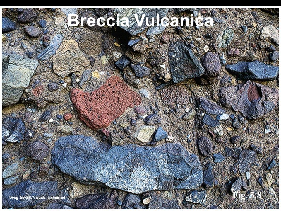 Breccia Vulcanica Fig. 5.8 Doug Sokell/Visuals Unlimited