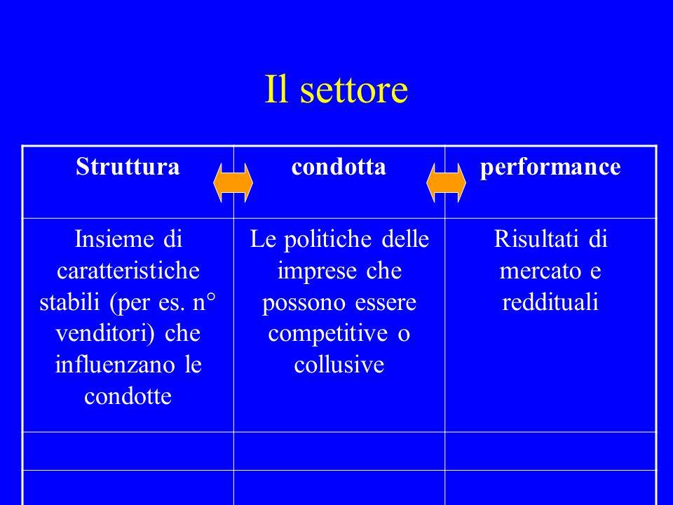 Il settore Struttura condotta performance