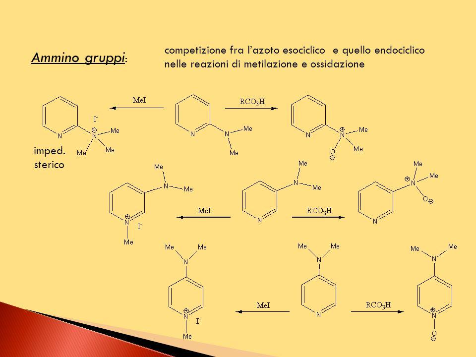 competizione fra l'azoto esociclico e quello endociclico nelle reazioni di metilazione e ossidazione