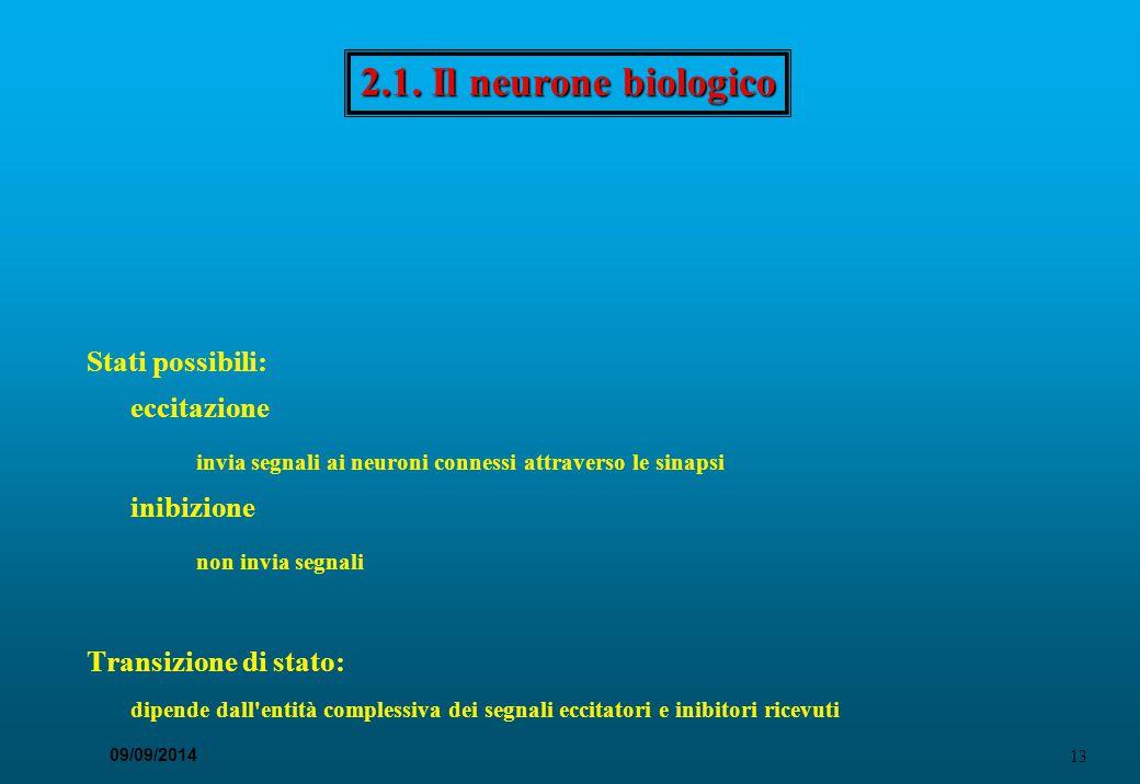 2.1. Il neurone biologico Diversi tipi di neur., ma con strutture e caratteristiche comuni. Nucleo.