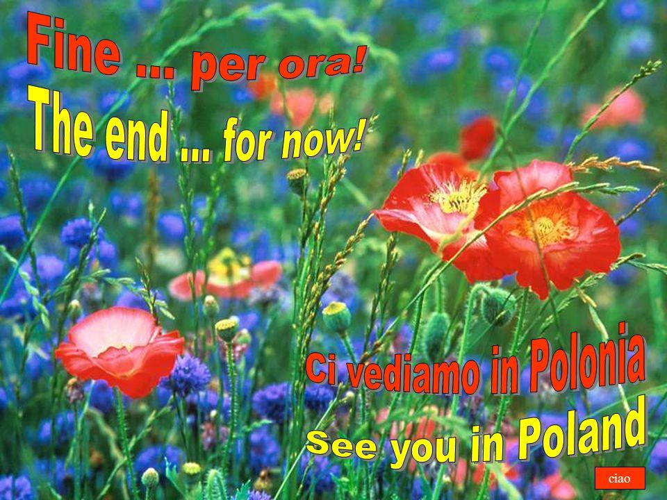 Fine ... per ora! The end ... for now! Ci vediamo in Polonia