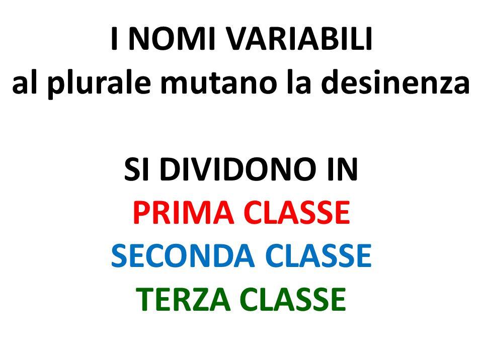 I NOMI VARIABILI al plurale mutano la desinenza SI DIVIDONO IN PRIMA CLASSE SECONDA CLASSE TERZA CLASSE