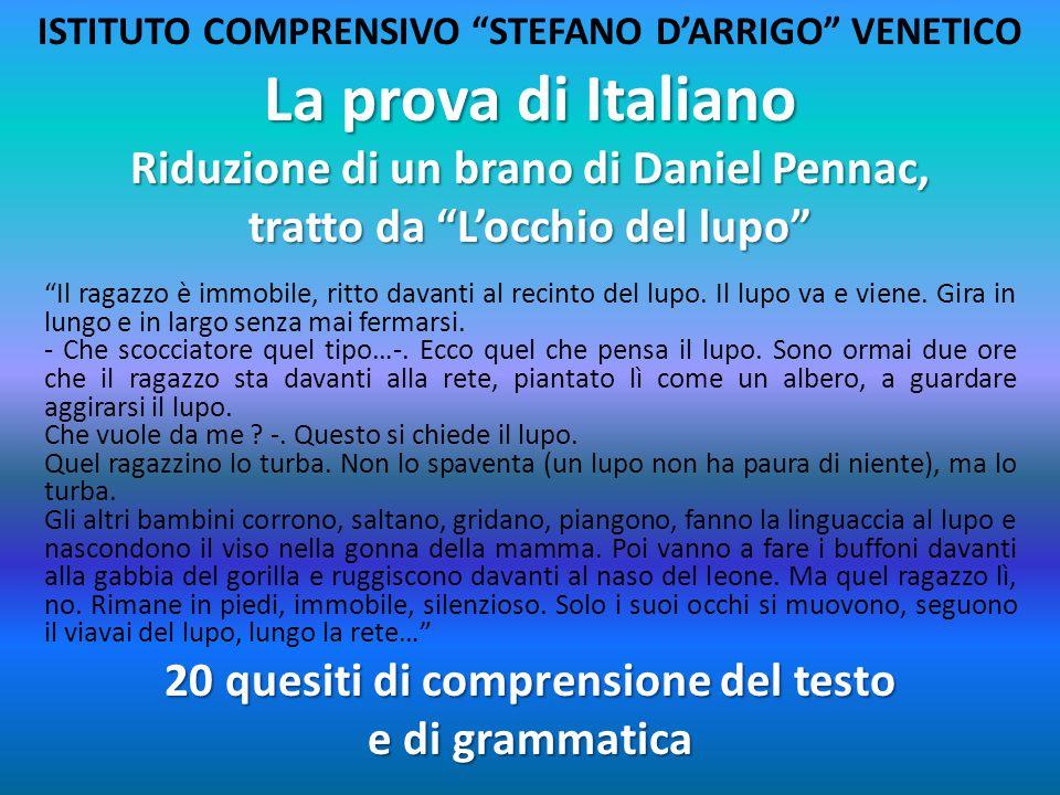 La prova di Italiano Riduzione di un brano di Daniel Pennac,