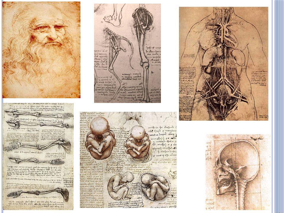Was Leonardo a scientist