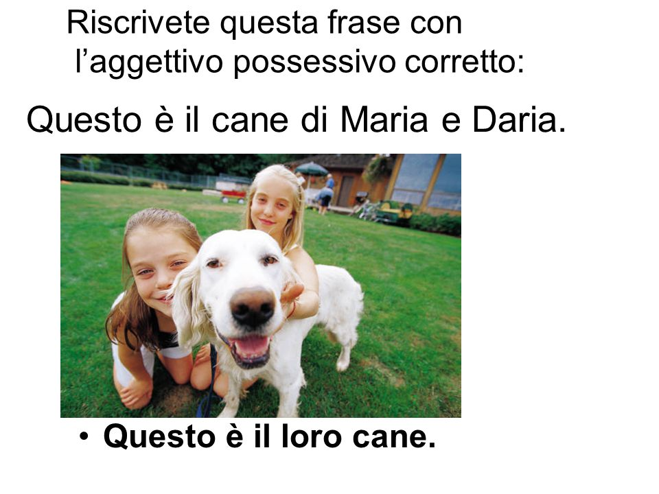 Questo è il cane di Maria e Daria.