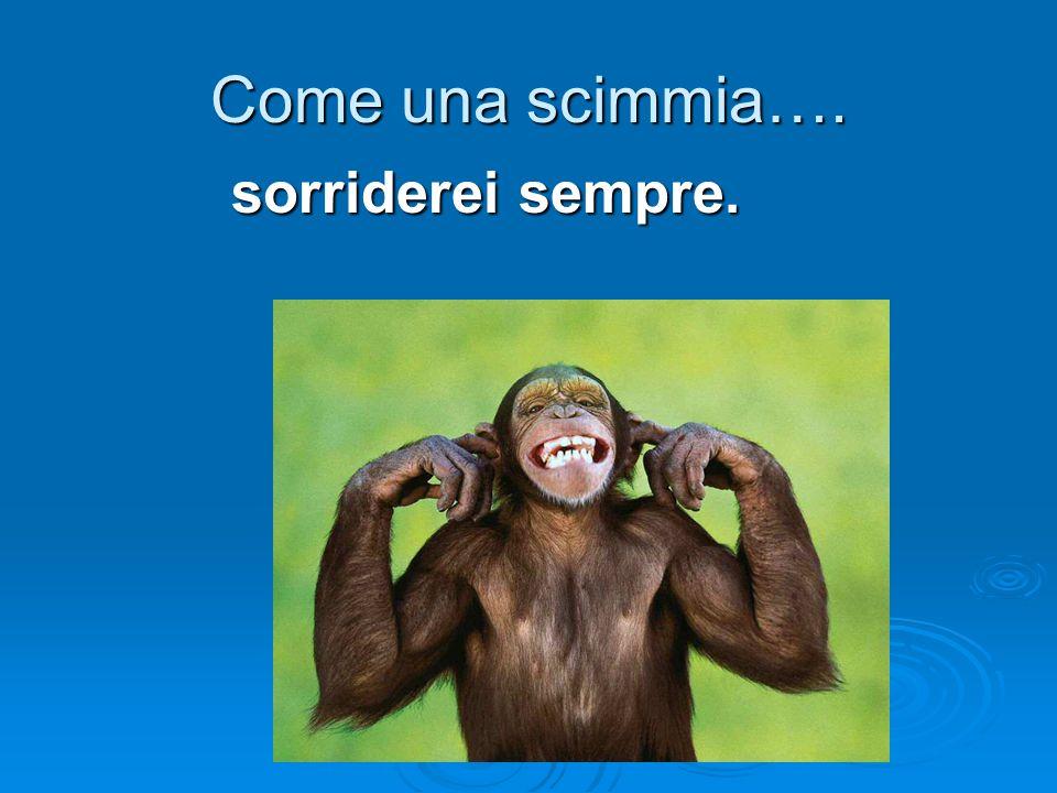 Come una scimmia…. sorriderei sempre.