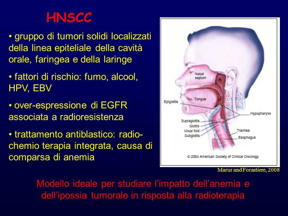 HNSCC gruppo di tumori solidi localizzati della linea epiteliale della cavità orale, faringea e della laringe.