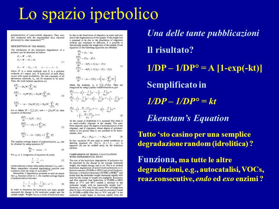 Lo spazio iperbolico Una delle tante pubblicazioni Il risultato