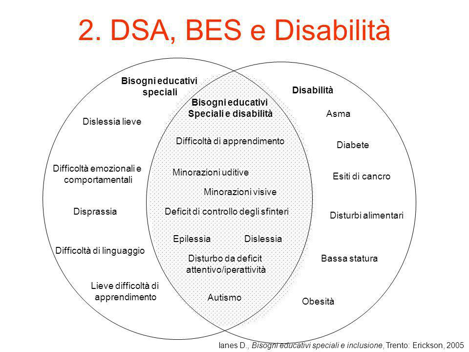 2. DSA, BES e Disabilità Bisogni educativi speciali Disabilità