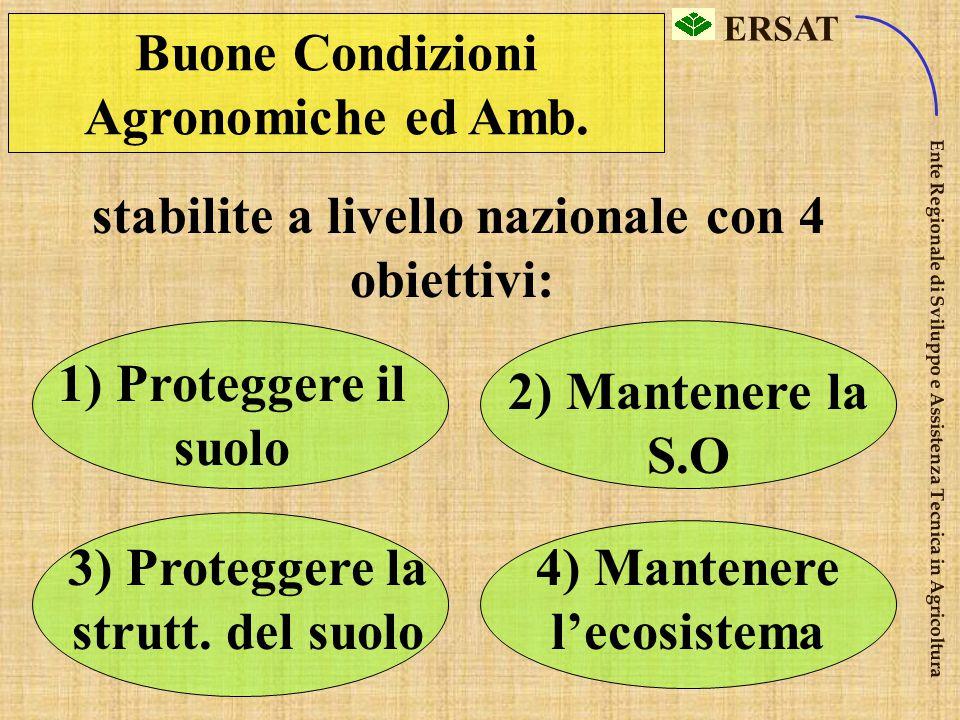 Buone Condizioni Agronomiche ed Amb.