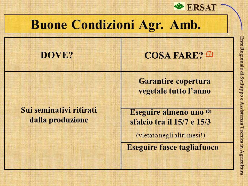 Buone Condizioni Agr. Amb.