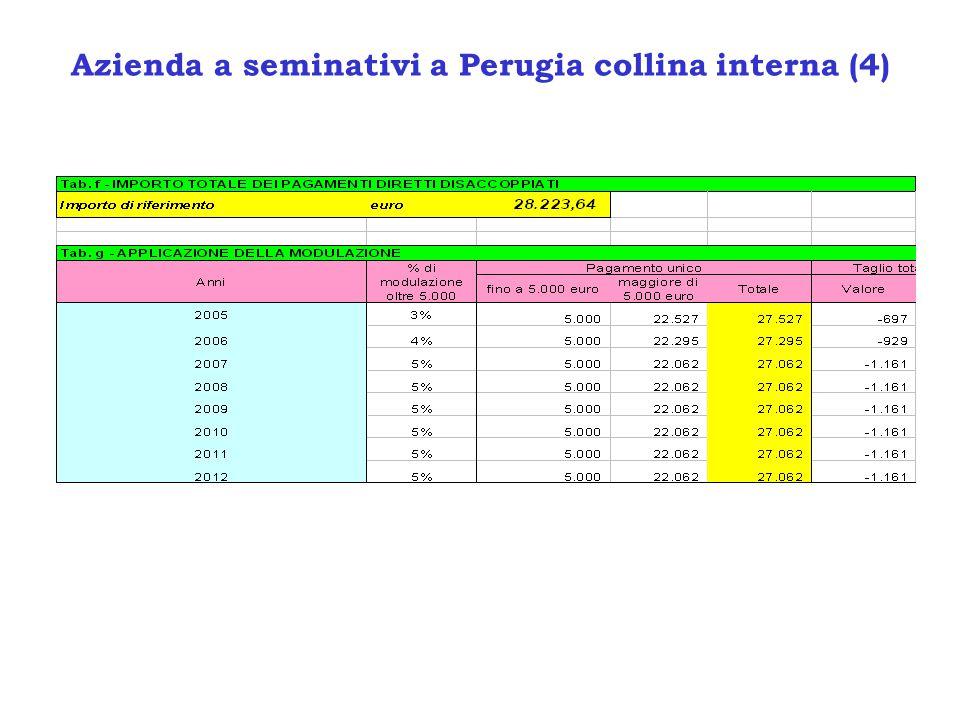 Azienda a seminativi a Perugia collina interna (4)