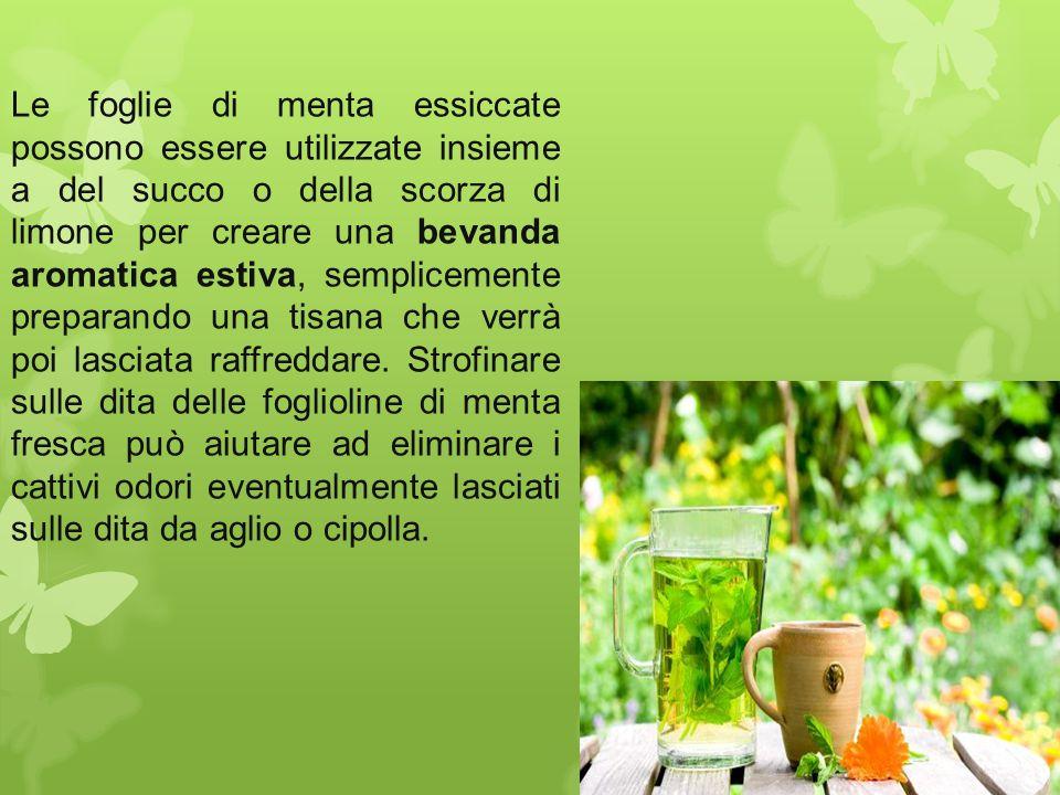 Le foglie di menta essiccate possono essere utilizzate insieme a del succo o della scorza di limone per creare una bevanda aromatica estiva, semplicemente preparando una tisana che verrà poi lasciata raffreddare.