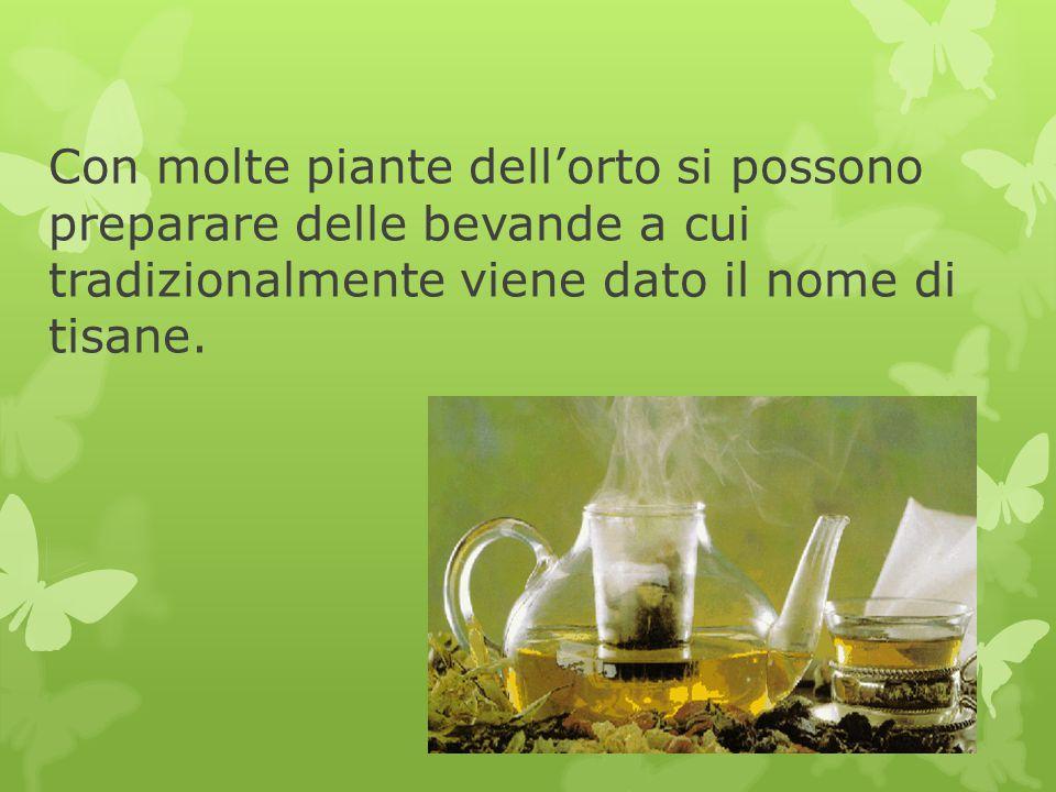 Con molte piante dell'orto si possono preparare delle bevande a cui tradizionalmente viene dato il nome di tisane.