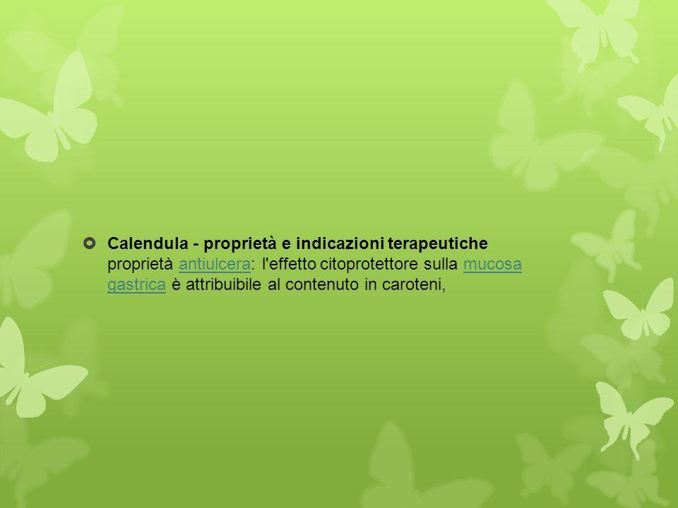Calendula - proprietà e indicazioni terapeutiche proprietà antiulcera: l effetto citoprotettore sulla mucosa gastrica è attribuibile al contenuto in caroteni,