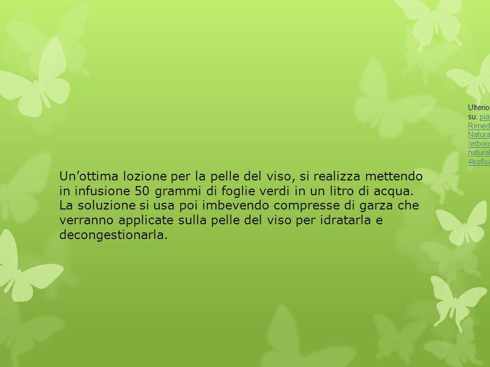 Ulteriori informazioni su: piantaggine - erboristeria - Rimedi Naturali http://www.giardinaggio.it/erboristeria/rimedi-naturali/piantaggine.asp#ixzz2x44ko6ya