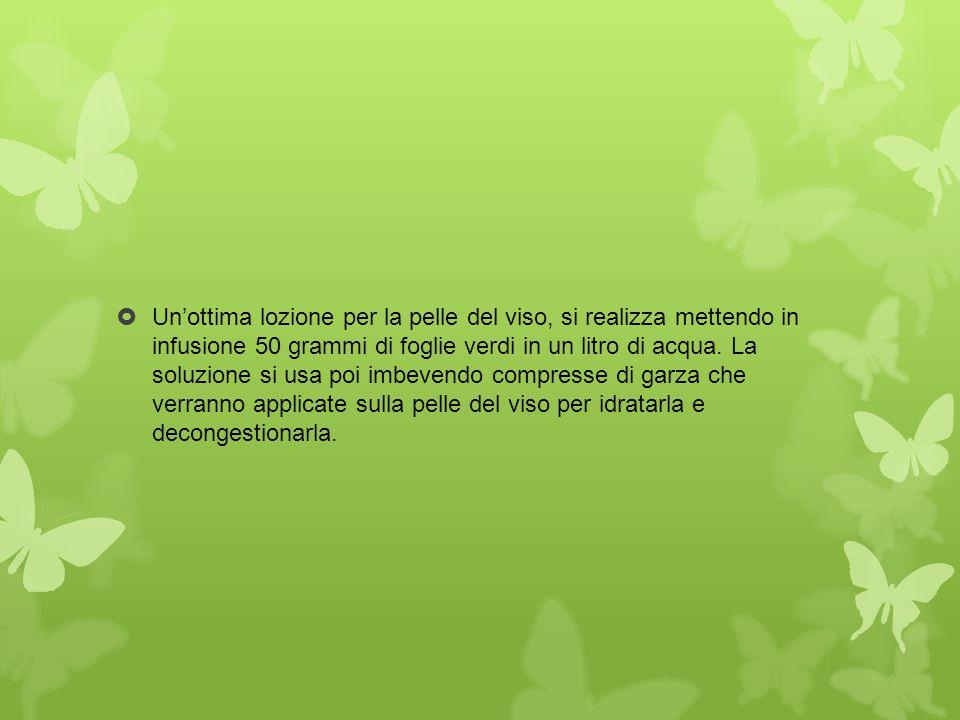 Un'ottima lozione per la pelle del viso, si realizza mettendo in infusione 50 grammi di foglie verdi in un litro di acqua.