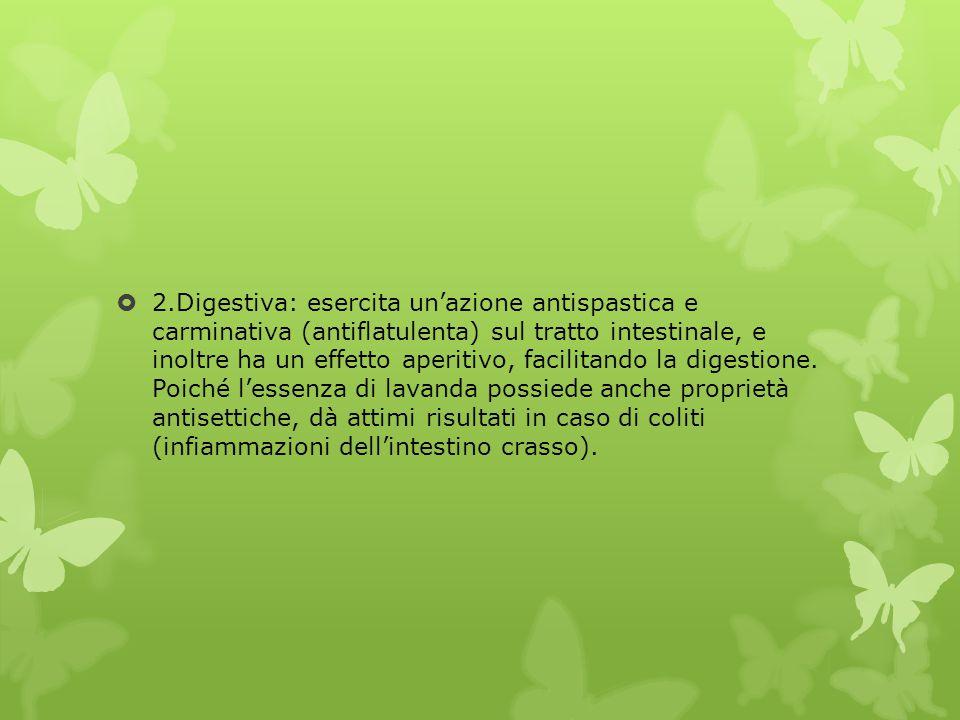 2.Digestiva: esercita un'azione antispastica e carminativa (antiflatulenta) sul tratto intestinale, e inoltre ha un effetto aperitivo, facilitando la digestione.