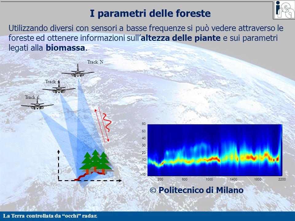 I parametri delle foreste