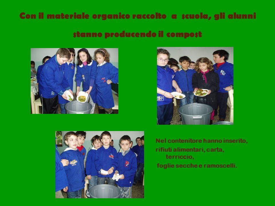 Con il materiale organico raccolto a scuola, gli alunni stanno producendo il compost