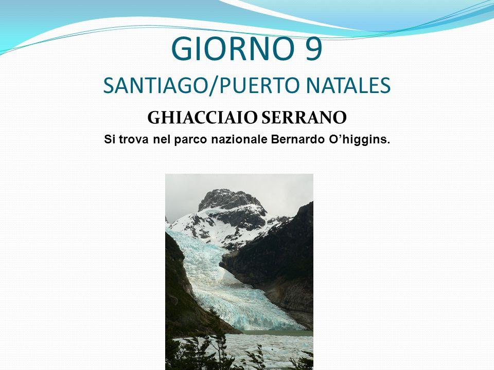 GIORNO 9 SANTIAGO/PUERTO NATALES