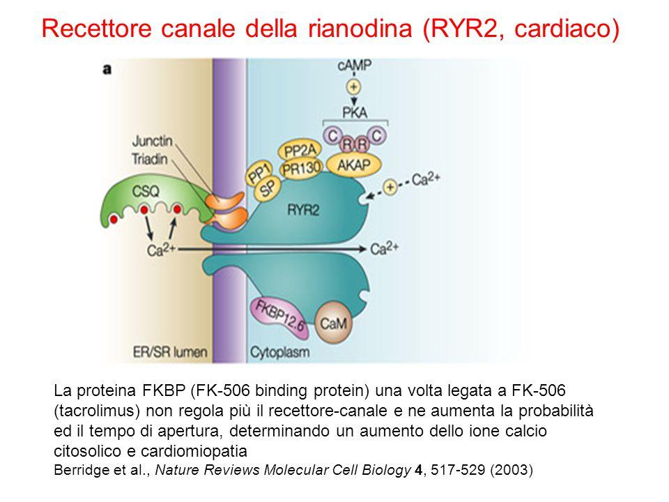 Recettore canale della rianodina (RYR2, cardiaco)