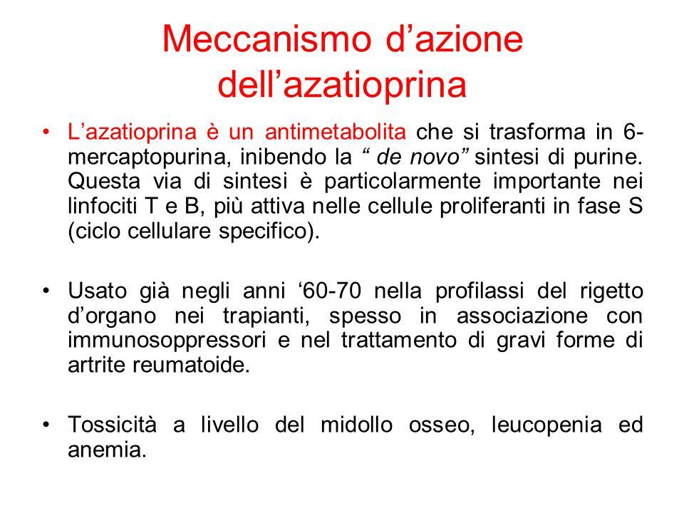 Meccanismo d'azione dell'azatioprina