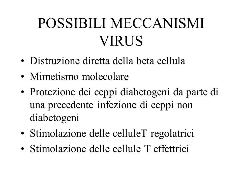 POSSIBILI MECCANISMI VIRUS