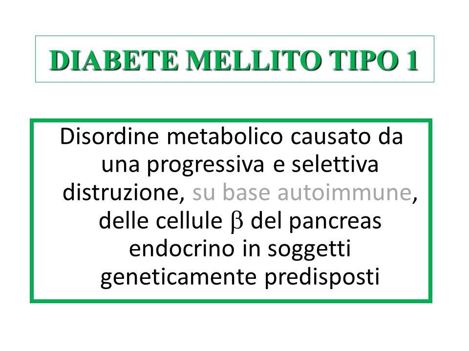 DIABETE MELLITO TIPO 1