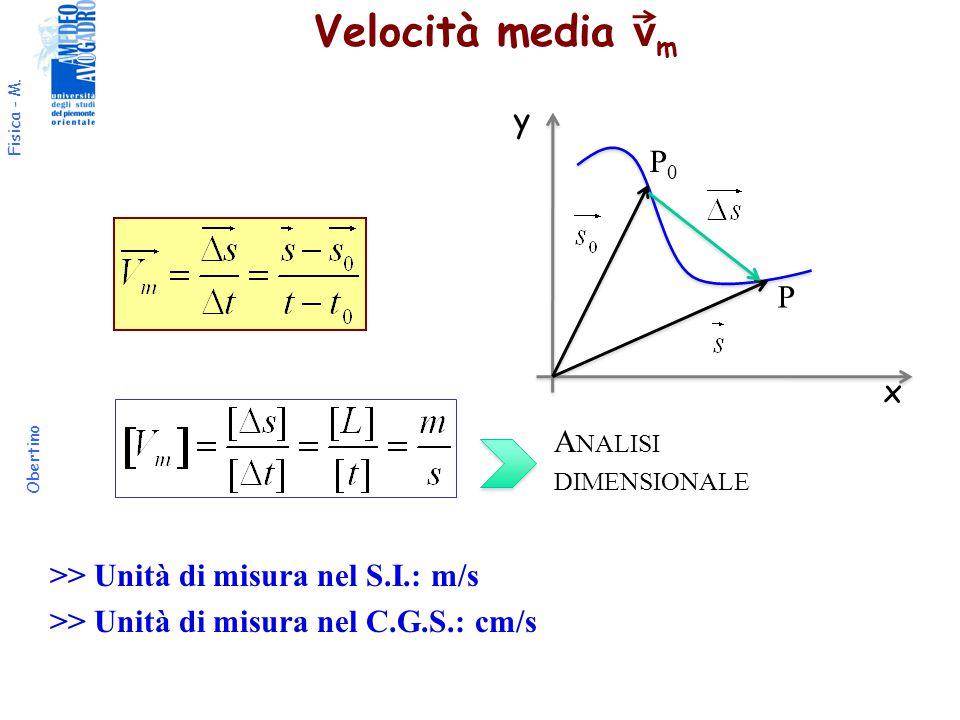 Velocità media vm y P0 P x Analisi dimensionale