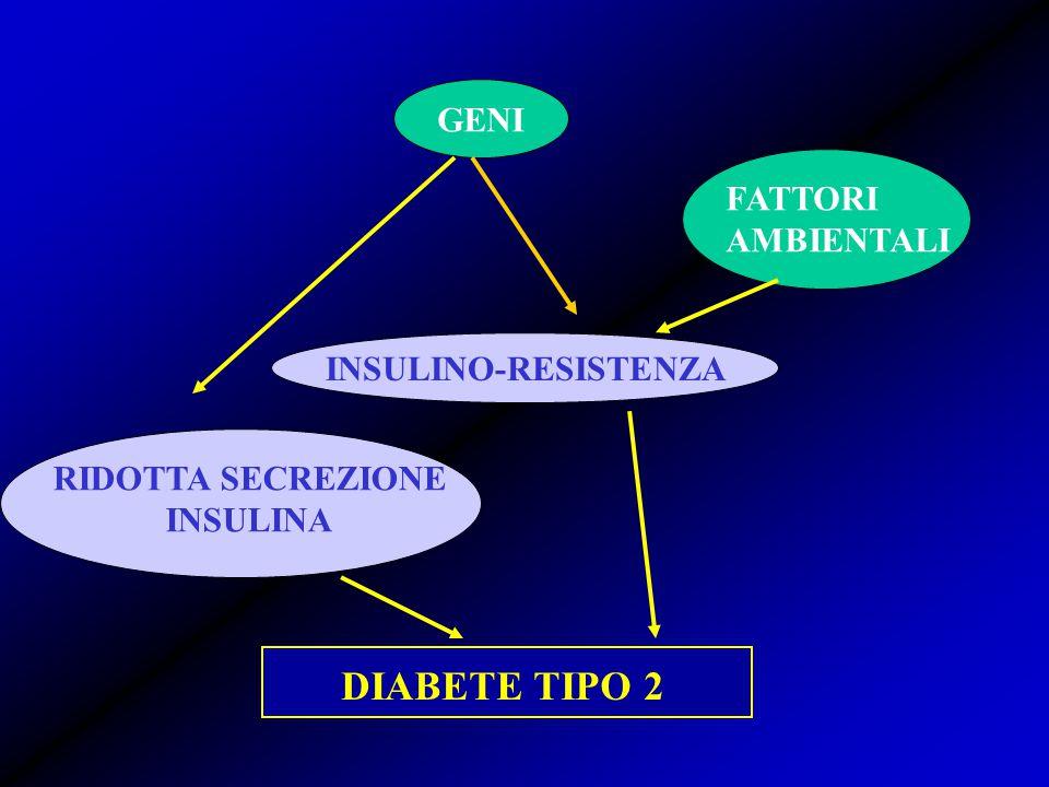 DIABETE TIPO 2 GENI FATTORI AMBIENTALI INSULINO-RESISTENZA
