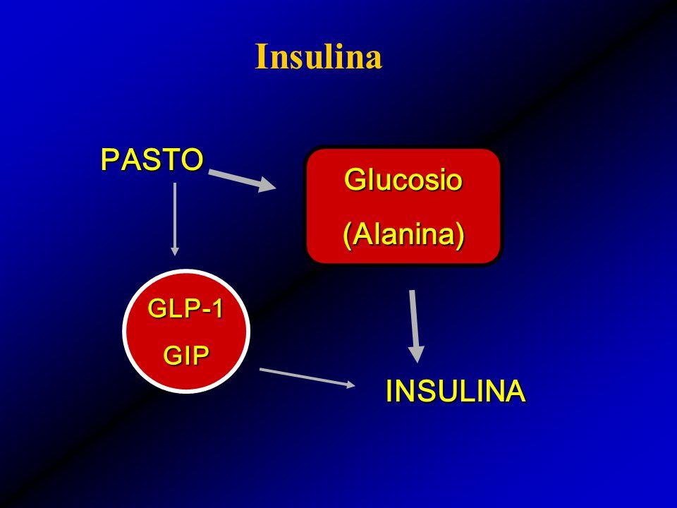 Insulina PASTO Glucosio (Alanina) GLP-1 GIP INSULINA