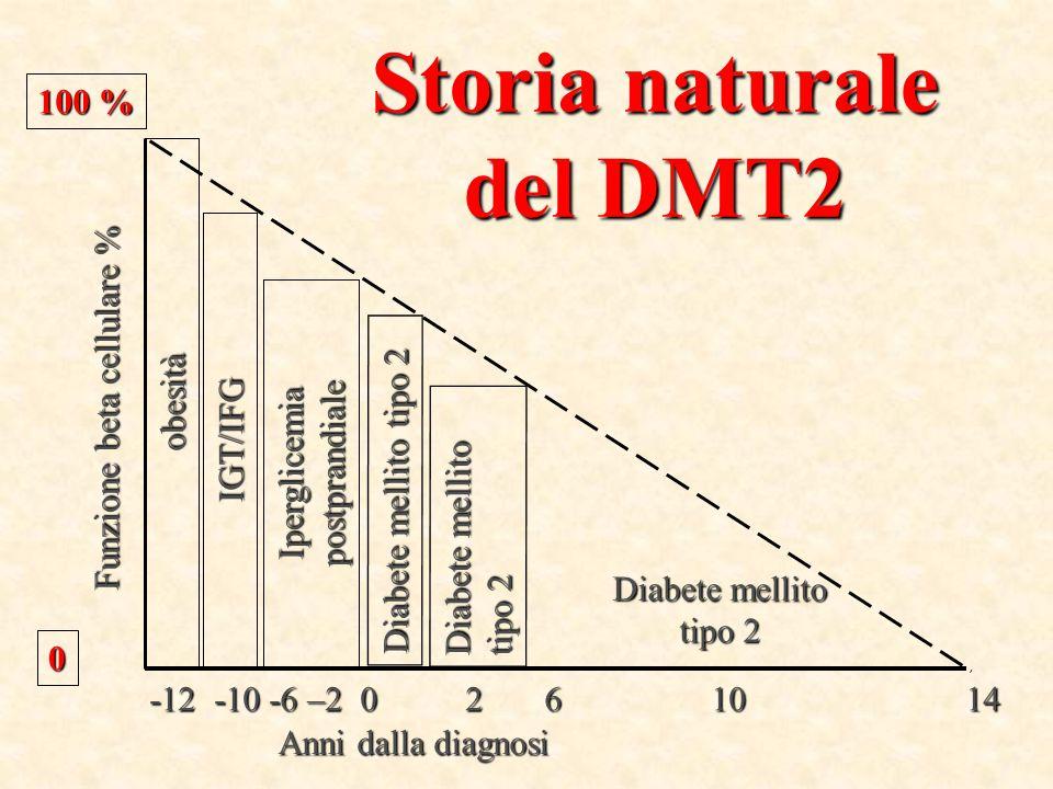 Storia naturale del DMT2