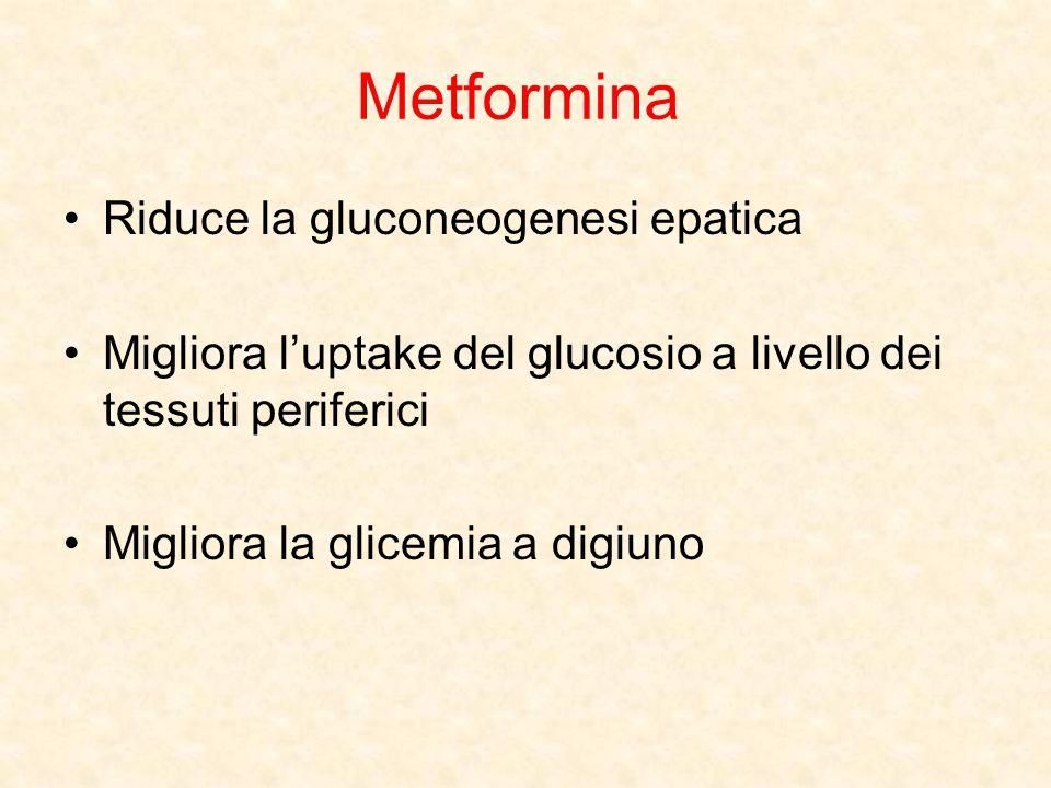 Metformina Riduce la gluconeogenesi epatica