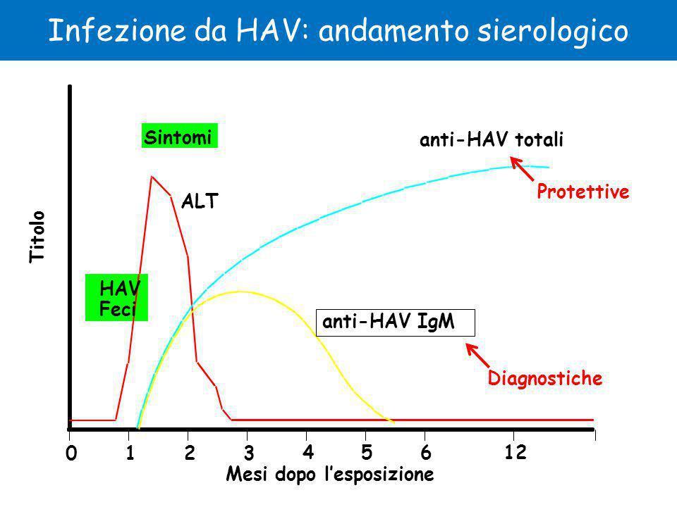 Infezione da HAV: andamento sierologico