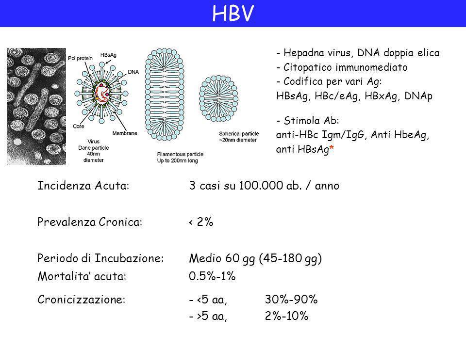 HBV Incidenza Acuta: 3 casi su 100.000 ab. / anno